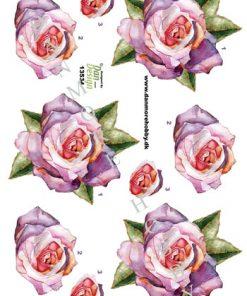 Blomster / 3D ark med en smuk rose / Dan Design