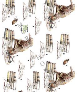 Blandet / 3D ark Harry Potter lign. / Dan-Design