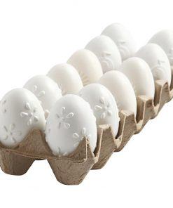 Æg i bakke af plast / H: 6 cm, 12 stk