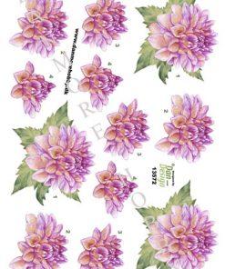 Blomster / 3D ark med smuk blomst / Dan-Design