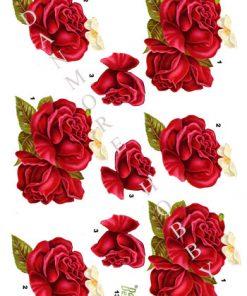 Blomster / Røde roser / Dan-Design