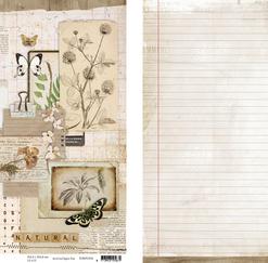 Karton / Scrapbooking ark / Studio light