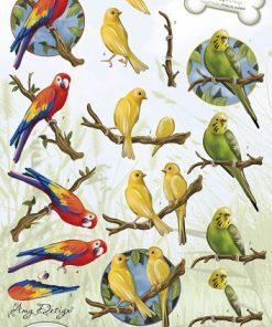 Dyr / Tropiske papegøjer / Amy design