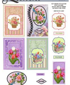 Blomster / Små blomsterkort / Quickies