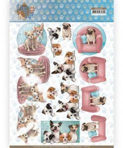 Dyr / Skønne hunde / Amy design