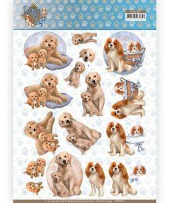 Dyr / Hunde der putter / Amy Design