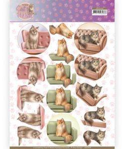 Dyr / Skønne katte / Amy Design