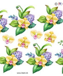 Blomster / Gul orkide / Hm Design
