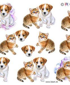 Dyr / Kattekilling & Hundehvalp / Hm design