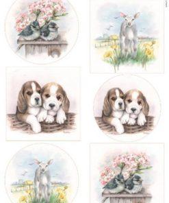 Dyr / Baby dyr / Marianne Design