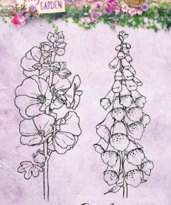 Stempel / Smukke blomster / Studio light