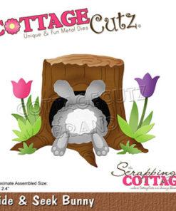 Dies / Hide & Seek / Cottage Cutz