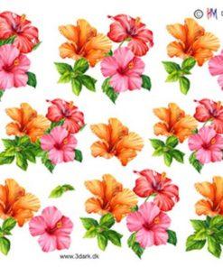 Blomster / Petunia / Hm Design