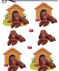 Dyr / Hund og hundehus / Quickies