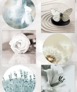 Blomster / Eternity / Marianne