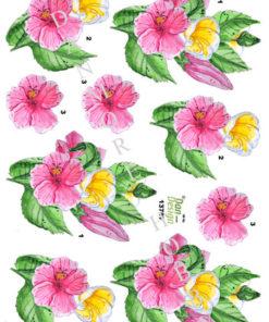 Blomst / Smukke blomster / Dan-Design