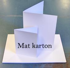 Kort karton, hvid, 200 g / 100 ark