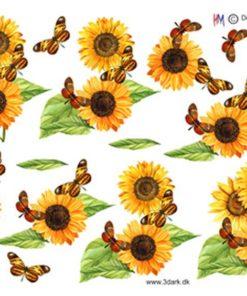 Blomst / Solsikker / Hm Design
