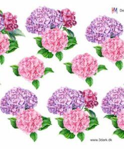 Blomster / Hortensia / HM Design