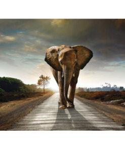 Diamond painting / Elefant
