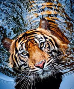 Diamond painting sæt / Tiger i vand