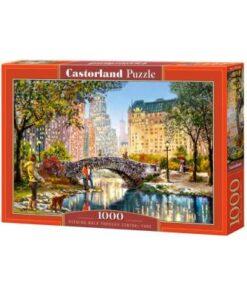 Puzzlespil / Aftentur i centralpark, 1000 brikker
