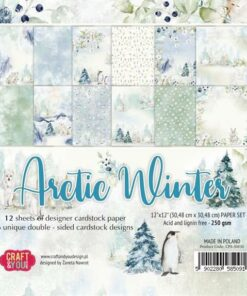 Karton 30,5x30,5 cm / Arctic Winter / Craft & You
